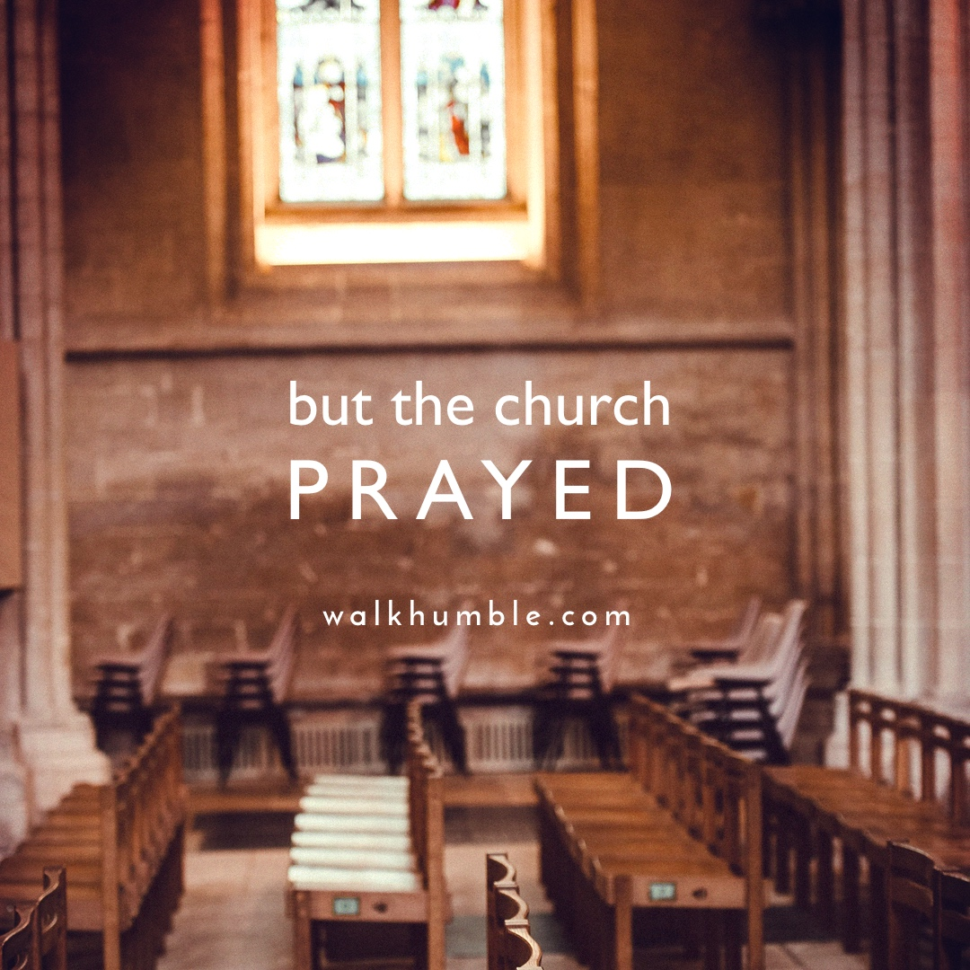 But the Church Prayed