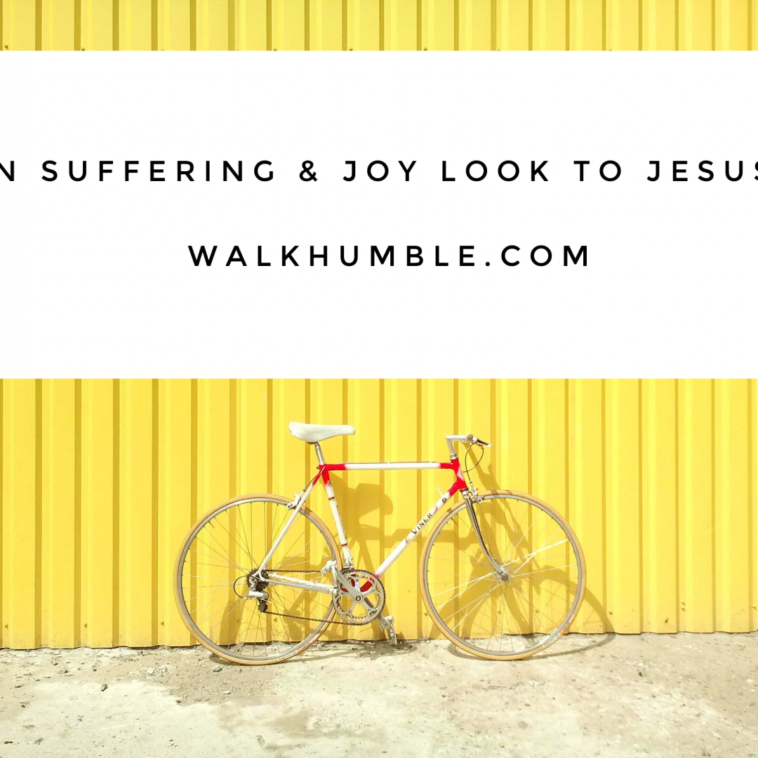 In Your Suffering, and In Your Joy, Look to Jesus
